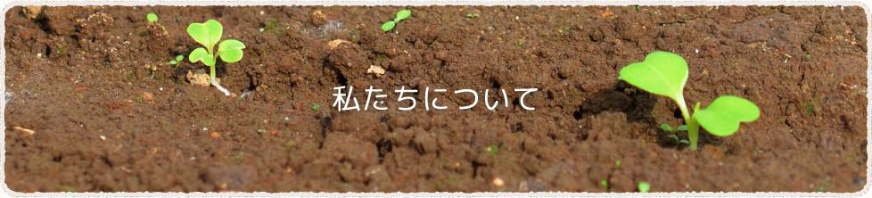 福岡県久留米市北野町の農園 「ベジハート」の会社概要、運営会社有限会社伊藤園芸