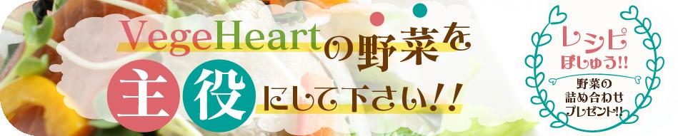 野菜レシピ募集