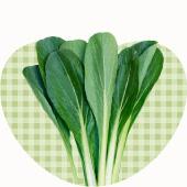 ベジハートの野菜たち、小松菜