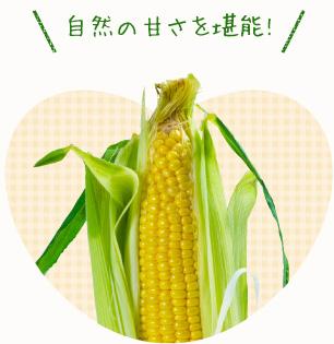 減農薬のトウモロコシ