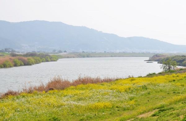 九州一の大河筑後川