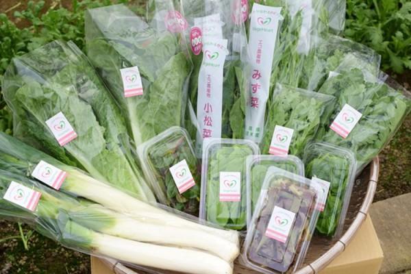 ベジハ―トの野菜詰め合わせ